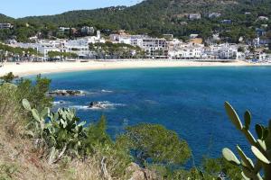 Sant Pol de Mar. Bahía formada por un paisaje dunar y aguas poco profundas.