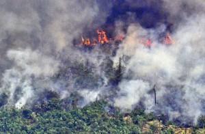 -_brazil-fire-amazon_32231825