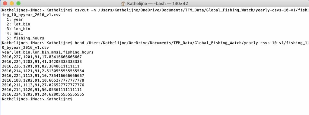 Ejemplo del uso de la línea de comandos para visualizar rápidamente un fichero muy grande.