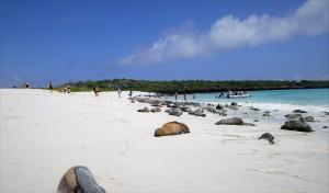 Fuente: Galápagos Cruceros.